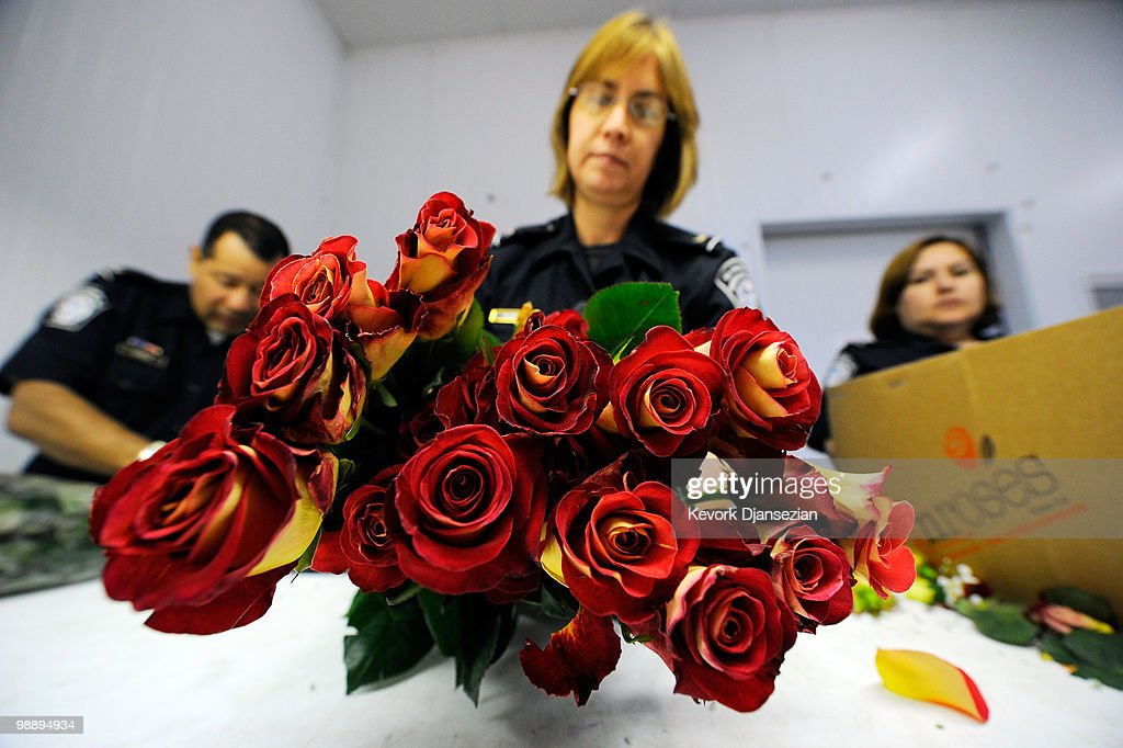 Customs And Border Protection Agents Inspect Flowers, Ahead Of Mother's Day
