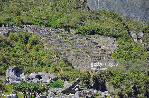 Agricultural Terraces and The Quarry, Machu Picchu