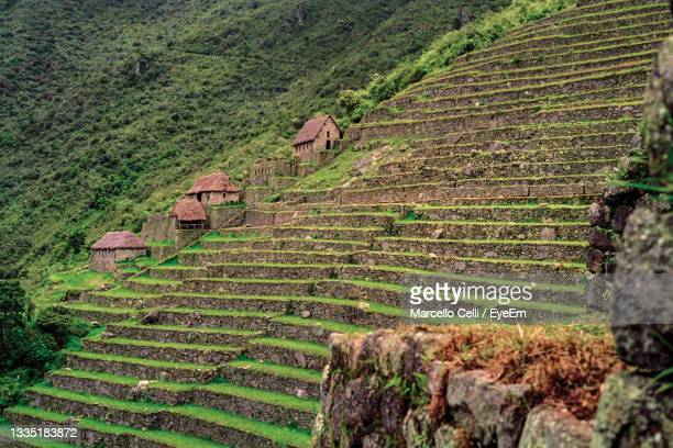 agricultural terraces on a cliff slope and houses in the ancient inca city of machu picchu, in peru. - smurfs: the lost village stock pictures, royalty-free photos & images