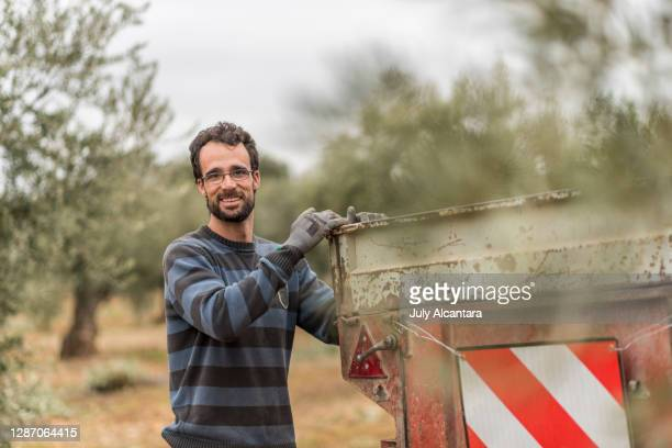agricultural workers pose beside the trailer among olive trees - mediterranean culture stock pictures, royalty-free photos & images