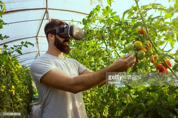 agriculture and smart farming concept - sensor stock pictures, royalty-free photos & images