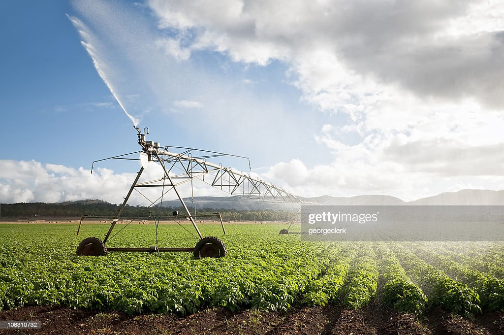 Agriculture: Crop Irrigation : Stock Photo