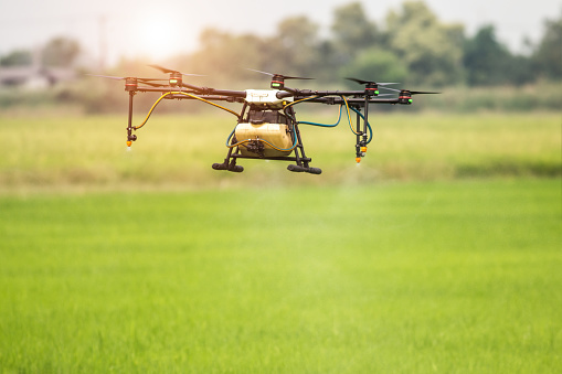 Agriculture drone fly to sprayed fertilizer on the rice fields - gettyimageskorea