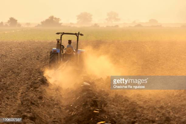agriculture farmer of asia rice field work concept. asian farmer working on rice field outdoor in agricultural of asia. worker in rural work in farm with sunset background. - indonesia stock pictures, royalty-free photos & images