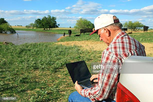 agriculture: farmer or rancher in field with computer, cattle, pond - only senior men stock pictures, royalty-free photos & images