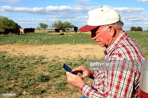Agriculture: Farmer or rancher with Smart Phone and Cattle