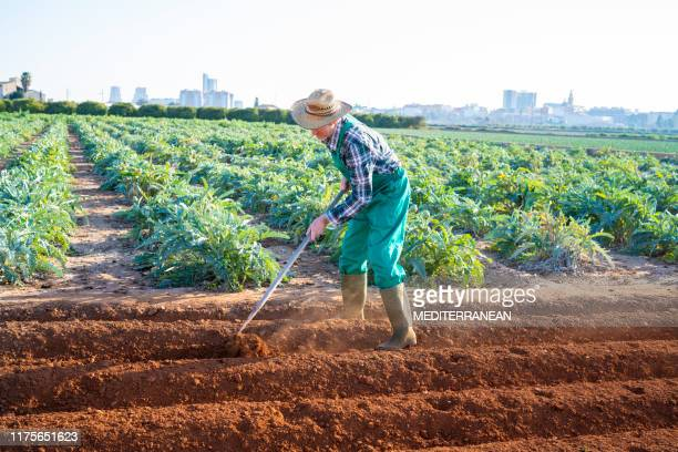 耕地で蹄と協力する農業農家 - 耕す ストックフォトと画像
