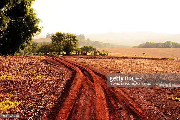 Agriculture farms with red soil