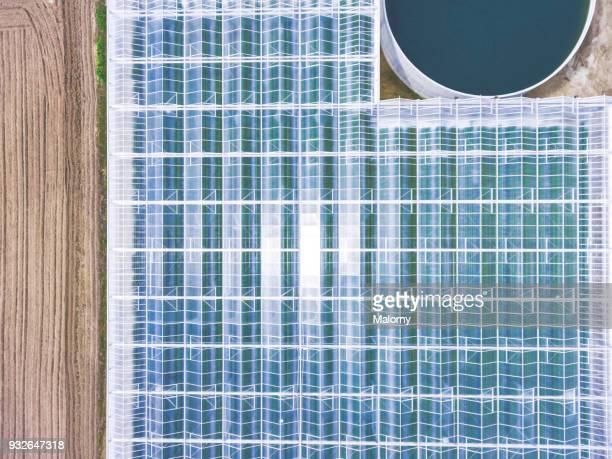 agriculture from above. greenhouse, aerial view, drone view. - gewächshäuser stock-fotos und bilder