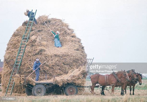 Agriculture in rural France circa 1970