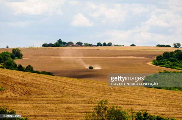 agriculture in the state of paraná in brazil - state stock pictures, royalty-free photos & images