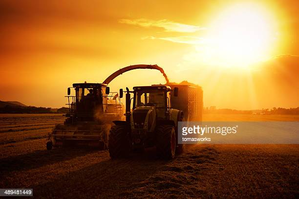 Landwirtschaft Maschine bei der Arbeit