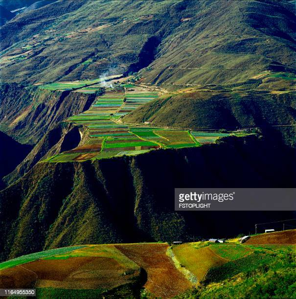 agricultura - paisajes de venezuela fotografías e imágenes de stock