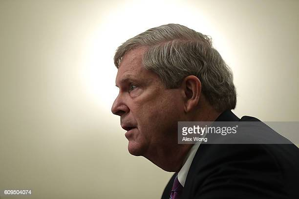 S Agriculture Secretary Tom Vilsack testifies during a hearing before the Senate Agriculture Nutrition and Forestry Committee September 21 2016 on...
