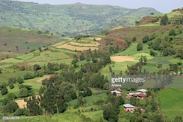 Agriculture showing farmland with fields and primitive huts in the Ethiopian Highlands Ethiopia East Africa