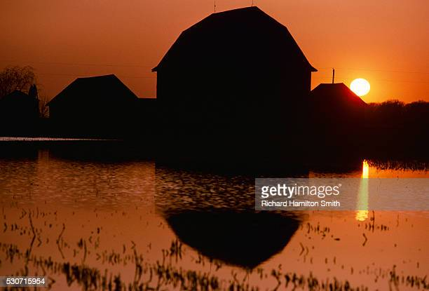 agriculture - silhouette of a barn at sunset reflected in a pond; wisconsin, usa. - staadts,_wisconsin stock pictures, royalty-free photos & images