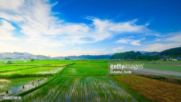 agriculture village in nagasaki , japan - 郊外の風景 ストックフォトと画像
