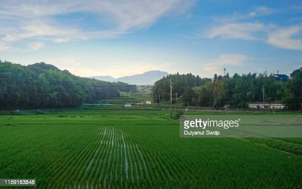 agriculture village in saga , japan - 山村 ストックフォトと画像