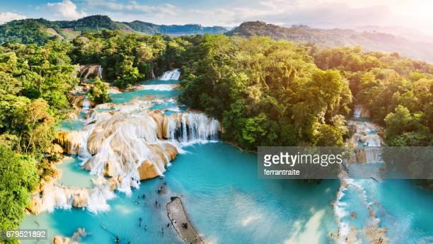 cascadas de agua azul en chiapas méxico - paisajes de mejico fotografías e imágenes de stock