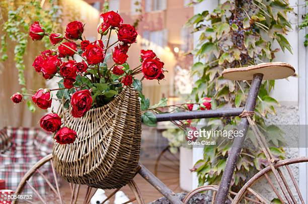 ah so romantic - silvia casali stock pictures, royalty-free photos & images