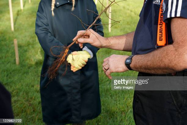 Ahead of National Tree Week community volunteers and Thames 21 employees plant a range of oak, holly, birch, ferns, willow, and more at Botany Bay...