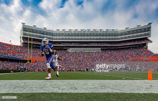 Ahmad Fuelwood of the Florida Gators score a touchdown past Jamarcus King of the South Carolina Gamecocks during the first half of the game at Ben...
