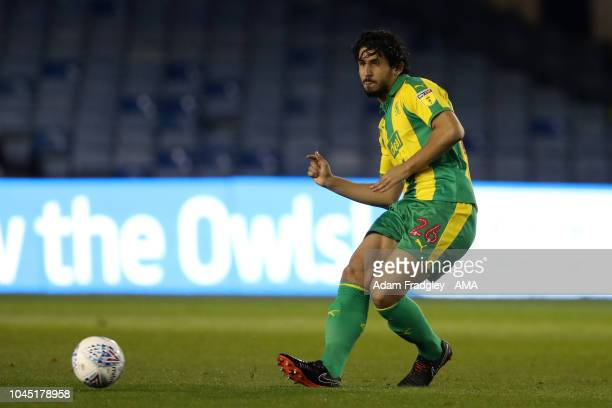 Ahmed Hegazi of West Bromwich Albion during the Sky Bet Championship match between Sheffield Wednesday and West Bromwich Albion at Hillsborough...
