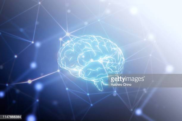 ai brain in network space - human nervous system stock pictures, royalty-free photos & images