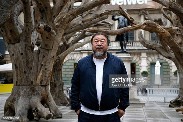 Ai Weiwei stands with his sculpture 'Tree' as he previews works from His landmark art exhibition at the Royal Academy of Arts on September 15 2015 in...