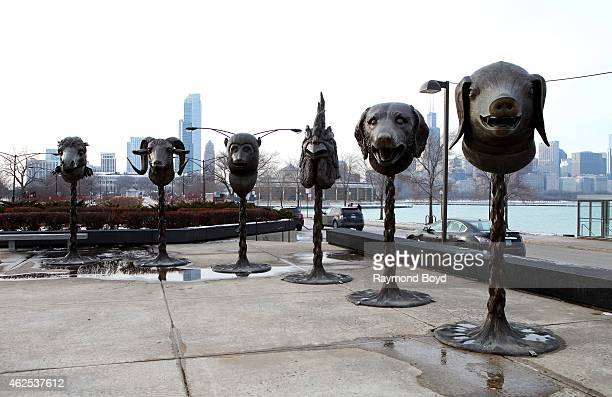 Ai Weiwei's 'Circle of Animals Zodiac Heads' Horse Ram Monkey Rooster Dog and Pig sculptures sits outside the Adler Planetarium in Chicago on January...