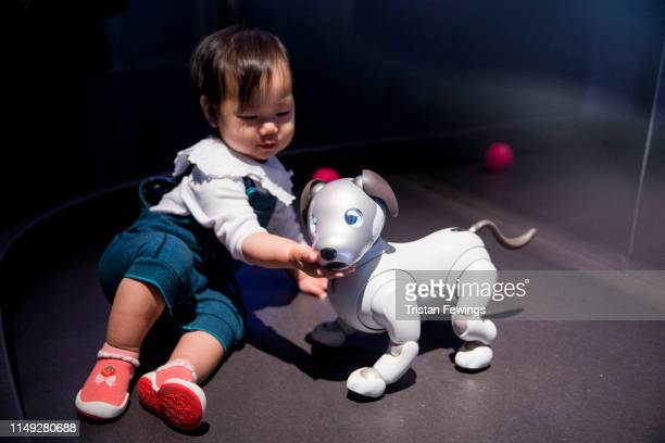Aibo' by Sony Corporation is displayed as part of the 'AI: More than Human' exhibition at the Barbican Curve Gallery on May 15, 2019 in London,...