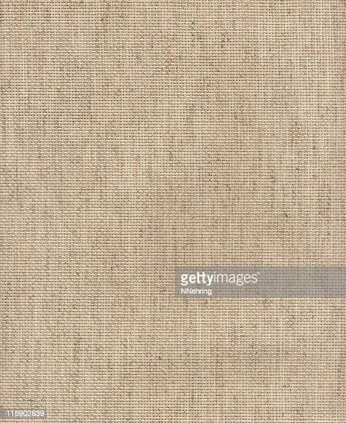 aida cloth in beige