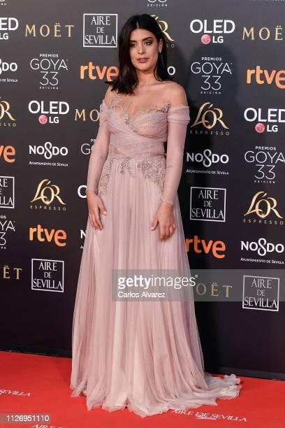 Aida Domènech attends the Goya Cinema Awards 2019 during the 33rd edition of the Goya Cinema Awards at Palacio de Congresos y Exposiciones FIBES on...