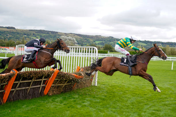GBR: Cheltenham Races