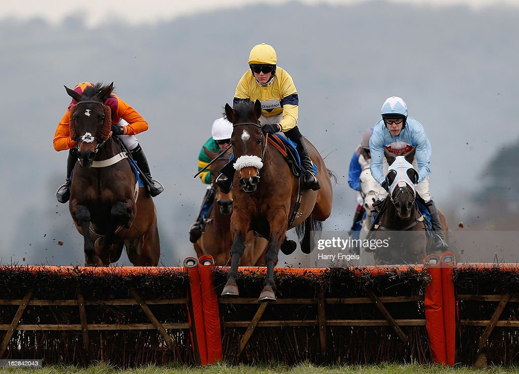 Aidan Coleman riding Jupiter Rex (C) in action during 'The C & D South West 25th Anniversary Novices' Handicap Hurdle Race' at Taunton Racecourse on February 28, 2013 in Taunton, England.
