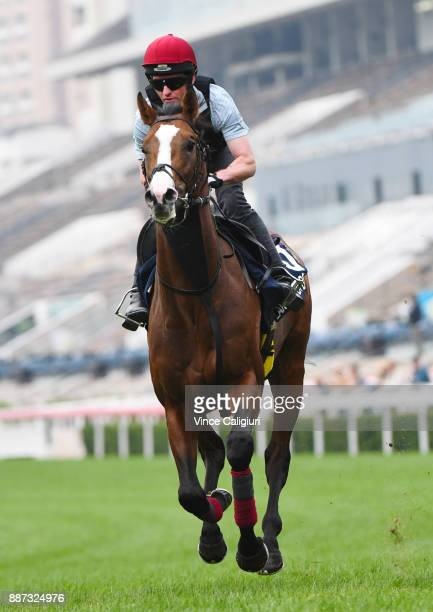 Aidan O'Brien trained Lancaster Bomber during a Longines Hong Kong International Trackwork Session at Sha Tin racecourse on December 7 2017 in Hong...