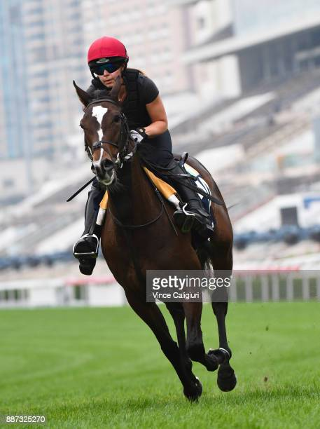 Aidan O'Brien trained Roly Poly during a Longines Hong Kong International Trackwork Session at Sha Tin racecourse on December 7 2017 in Hong Kong...