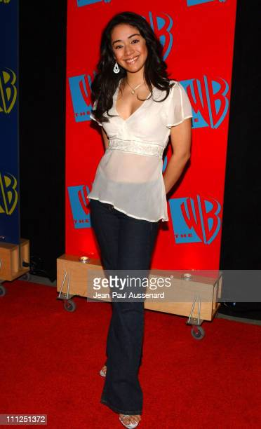 Aimee Garcia during The WB Network's 2004 All Star Party at Hollywood Highland in Hollywood California United States