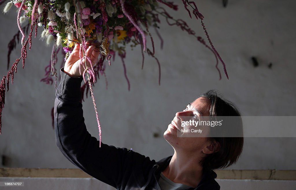 Aimee Kingdom Cotehele's senior gardener helps create the Cotehele Christmas garland at the National Trust's Cotehele Tudor house, on November 14, 2012 in Cornwall, England. At 60ft (18.2 meters) the Cotehele garland - a tradition that was started in the 1950s and is created by using flowers picked and dried in the grounds of the Tudor mansion - is the longest at any Trust property in the country. Using flowers such as Ornamental Grasses, Everlasting Sand Flower, Straw Flower, Paper Daisy, Paper rose and Statice, the poor summer weather has meant that only 20,000 flowers have been picked this year rather than the usual 30,000.