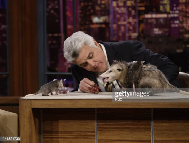 LENO Air Date Episode 3551 Pictured Host Jay Leno with Julie Scardina's Sea World Animals on May 6 2008 Photo by Paul Drinkwater/NBCU Photo Bank
