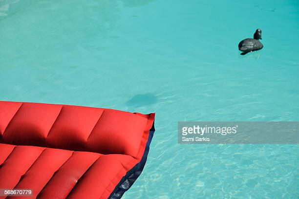 Air mattress floating in pool