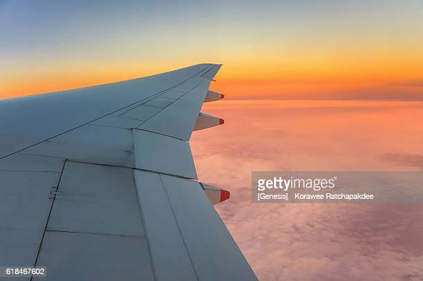 Air plan wing in the morning sunrise