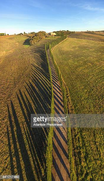 air view of a beautiful cypress road near altesi - モンタルチーノ ストックフォトと画像