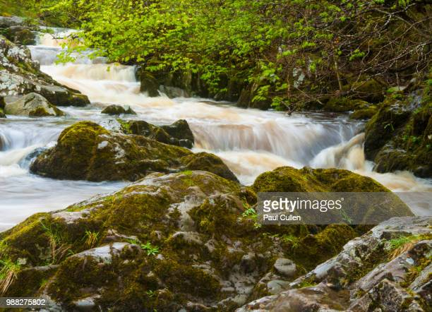 Aira Force cascade in Spring