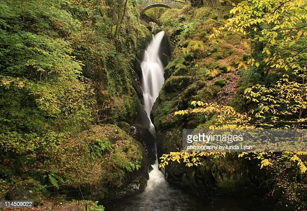 Aira Force is a series of waterfalls near Ullswat