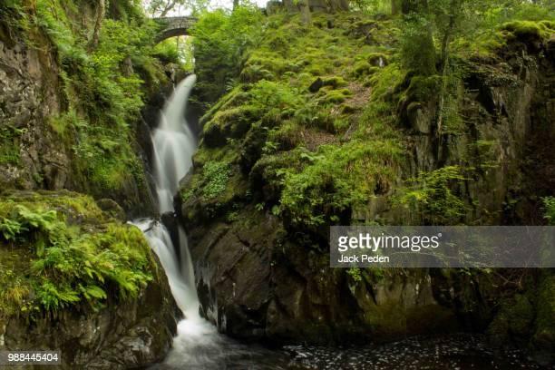 Aira Force // Lake District