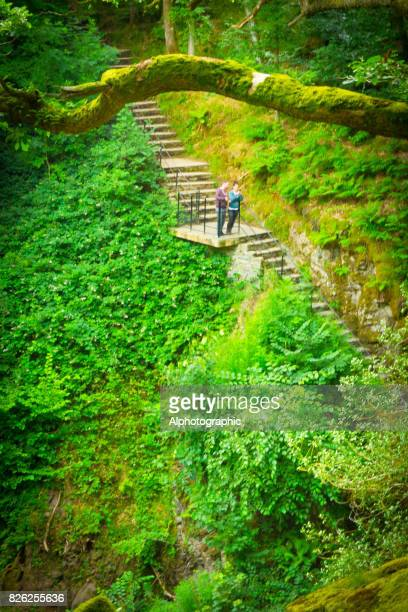 Aira Force stone steps
