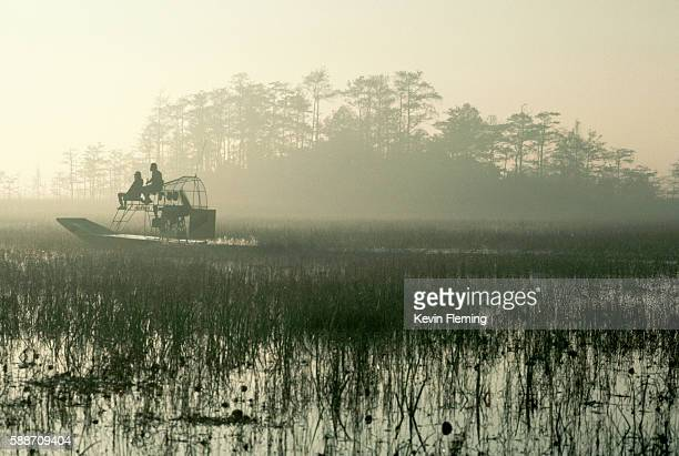 airboat cruising swampy everglades - gulf coast states stock pictures, royalty-free photos & images