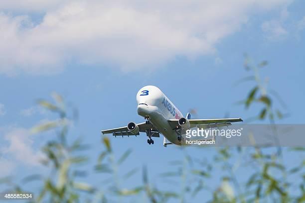 airbus beluga landing in hamburg finkenwerder - airbus beluga stock pictures, royalty-free photos & images