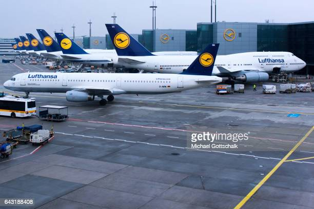 Aircrafts of german airline Lufthansa seen at the apron of Frankfurt Airport on February 20 2017 in Frankfurt Germany